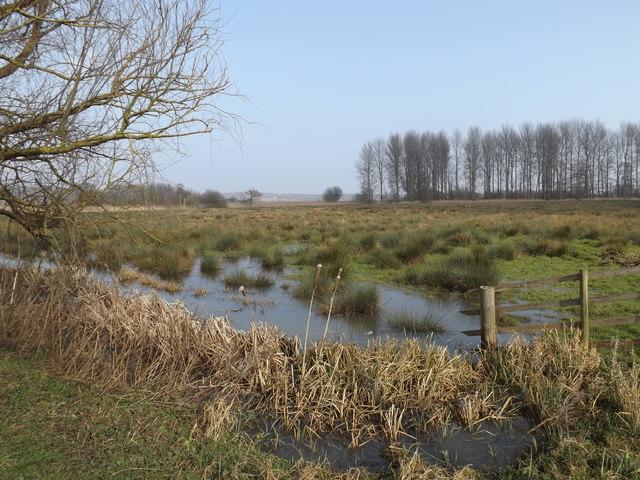 Farmland off Eastbridge Lane