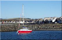 """NX3343 : Yacht """"Balandra"""" by Jon Alexander"""