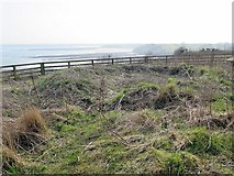 NU2516 : Remains of Mesolithic round-house, Howick by Andrew Curtis