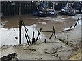 TF6120 : Silting up - The Fisher Fleet, King's Lynn by Richard Humphrey