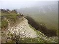 TL0529 : Old chalk pit, Sundon Hills by Robin Webster