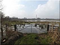 TM4566 : Field entrance off Eastbridge Lane by Adrian Cable