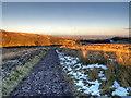 SD6612 : Footpath Across Smithills Moor by David Dixon