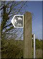ST6565 : Man, Mount and Mountain Bike by Neil Owen
