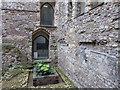 TQ3280 : Remains of Winchester Palace, London SE1 by Christine Matthews