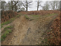 TQ1871 : Steep paths in Richmond Park by Hugh Venables