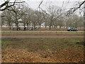 TQ1872 : Cyclists in Richmond Park by Hugh Venables