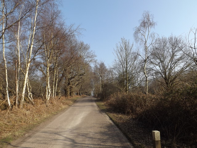 Sheepwash Lane, Eastbridge