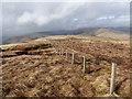 NS9106 : Fenceline on Blawbar by Alan O'Dowd