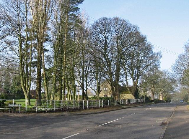 Heath - Mansfield Road alongside Heath Common