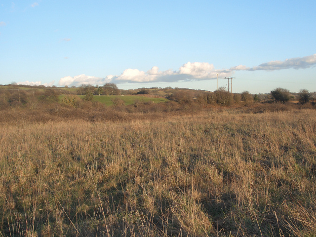 Uncultivated land off Moor Lane, nr Nottage (2)