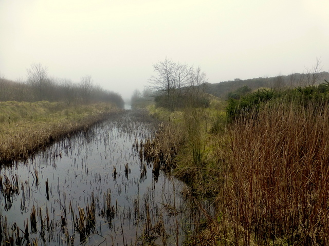 Marshy ground, Dunmore