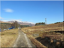 NN3039 : West Highland Way looking towards Bridge of Orchy by John Ferguson