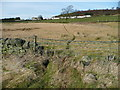 SE0520 : Animal track across rough pasture by Humphrey Bolton
