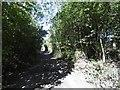 NZ2472 : Seatonburn Waggonway by Richard Webb