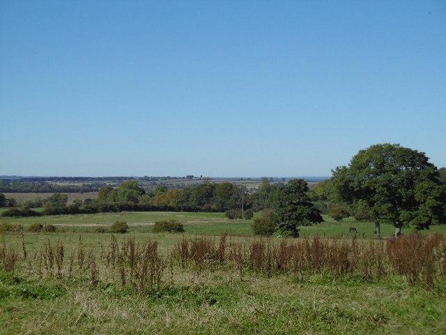 Fields north of Dinnington