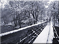 SJ9892 : River Etherow footbridge by Stephen Burton