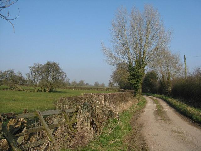 Farm lane at Hilton Fields