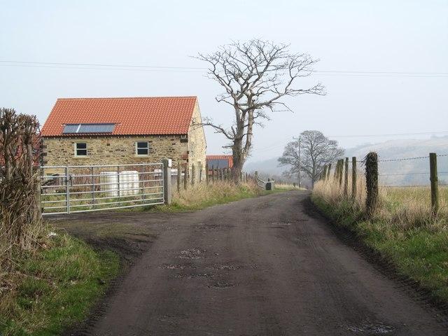 Farm road at Hunwick Station