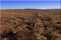 SD9635 : Boundary Stone on Middle Moor Flat by Chris Heaton