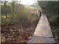 ST5959 : Footbridge over the pond by Neil Owen