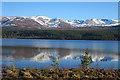NH9905 : Cairngorm Ski Area from Loch Morlich by Anne Burgess