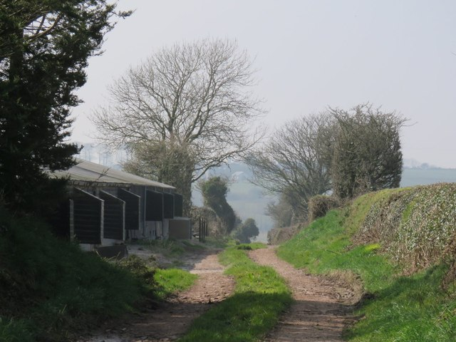 Farm buildings observed down a trackway