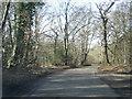 SU9693 : Botterells Lane at Hodgemoor Wood by Colin Pyle