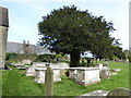 TQ3009 : All Saints Churchyard, Patcham (c) by Basher Eyre