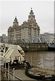 SJ3390 : The Liver Building from Liverpool's waterfront by Neil Theasby