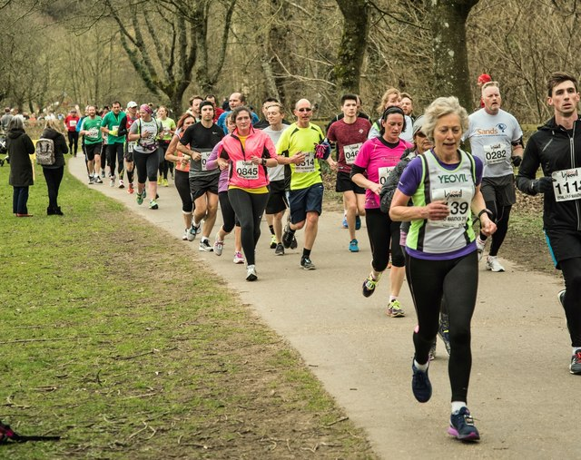 Image result for hertfordshire half marathon