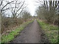 SE3303 : The Trans Pennine / Dove Valley Trail, heading west by Christine Johnstone