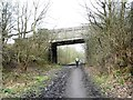 SE3303 : Cyclist approaching Hound Hill Lane Bridge by Christine Johnstone