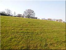 TQ2472 : Henman Hill or Murray Mound by Paul Gillett
