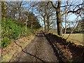 NS4275 : Overtoun House Circular Path by Lairich Rig