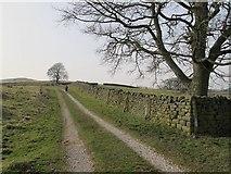 SE1544 : Track onto Rombalds Moor by Stephen Craven