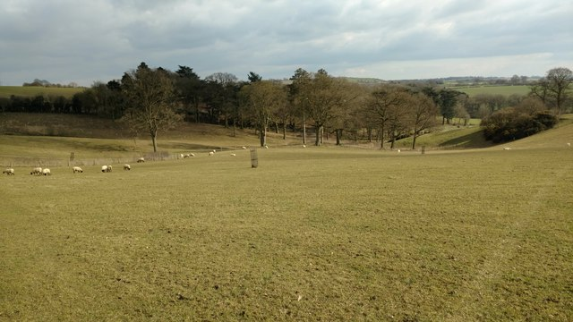 Pasture land on the Hemplow Hills