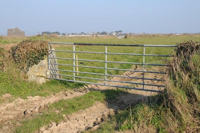 Field gate near Cargoll Farm