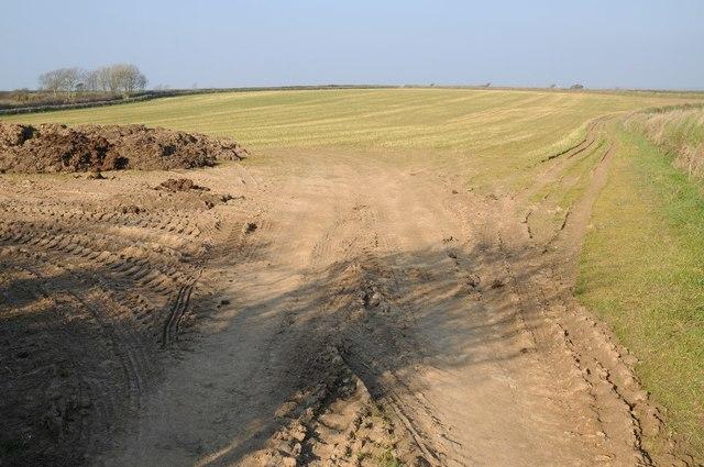 Field near Chy-woon Praze