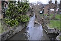 TQ1649 : Pipp Brook by N Chadwick