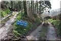 SX2162 : Lane and track near Scawn Mill by Derek Harper