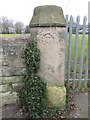SJ3385 : Weathered gatepost in Highfield South by John S Turner