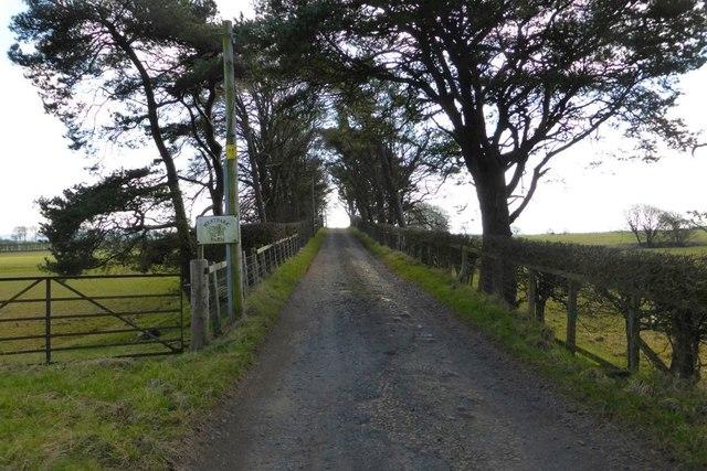 Track to Westpark Farm