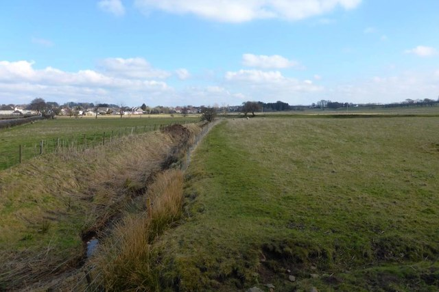 Drainage ditch and grazing near Strathaven