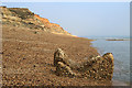 SZ2692 : WWII coastal defences of SW Hampshire today - Taddiford Gap anti-tank cubes (3) by Mike Searle