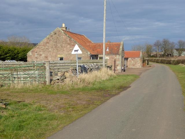 Roadside cottages near Nether Hailes Farm