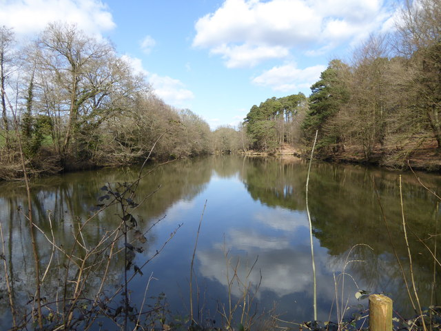 Carterslodge Pond seen from the bridleway
