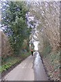 SO8191 : Pear Tree Lane by Gordon Griffiths
