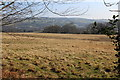 ST1897 : Pasture east of Penmaen farmyard by M J Roscoe
