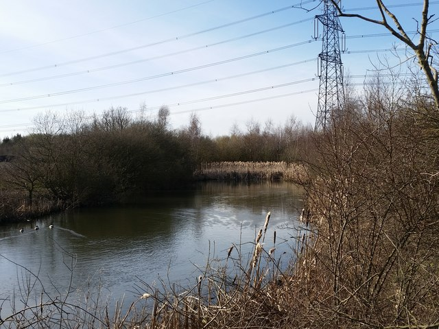 Unnamed pond by Ings Lane, Allerton Bywater